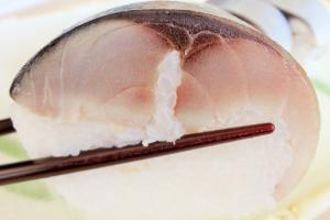 鯖屋の鯖鮨を焼津港直送